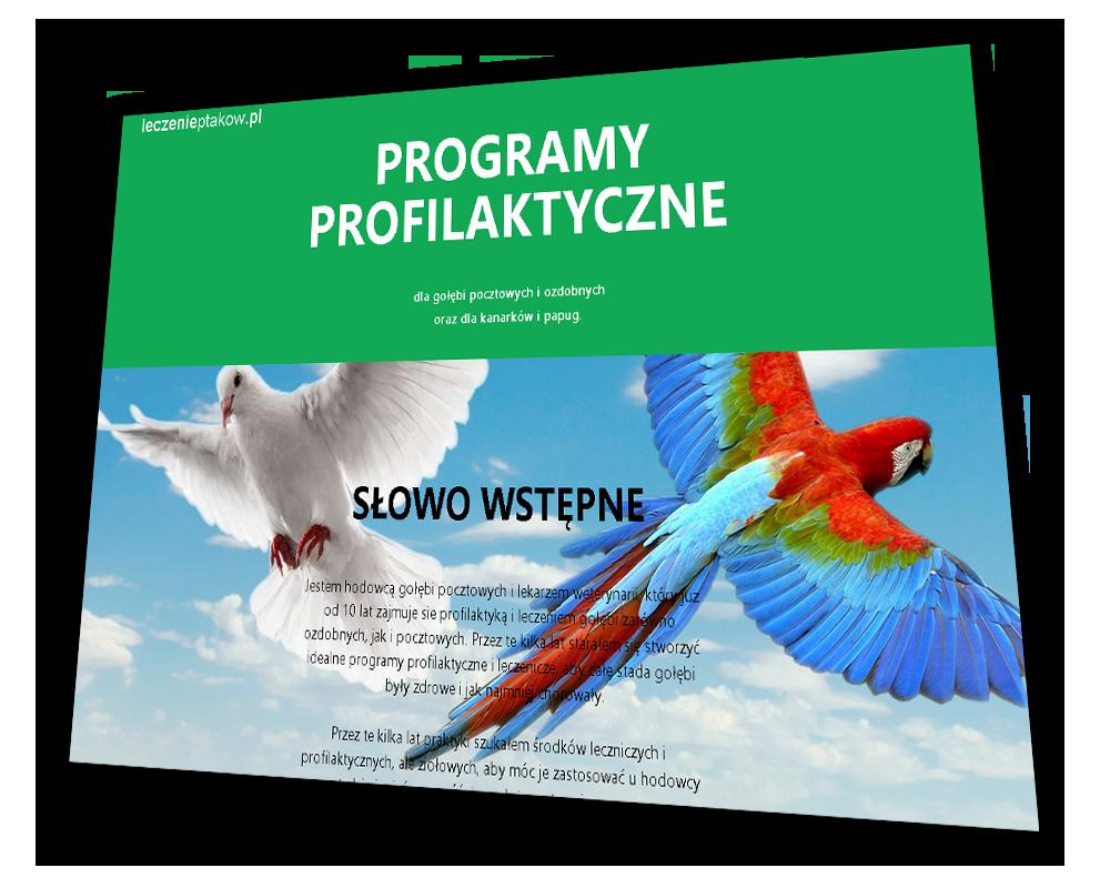 Strona internetowa Leczenie Ptaków